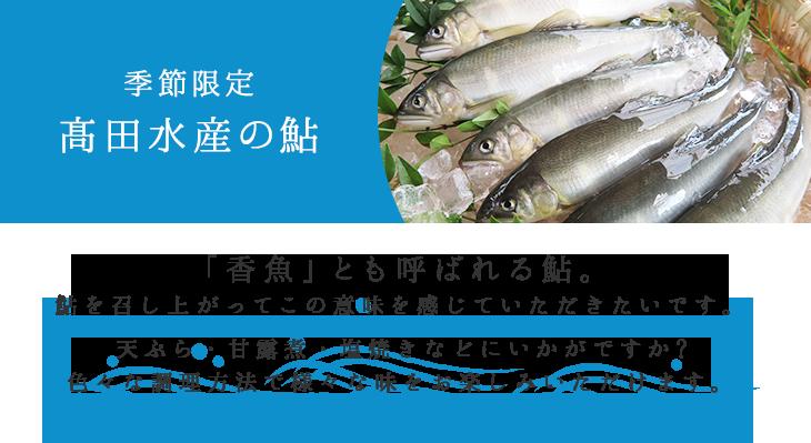 季節限定 高田水産の鮎